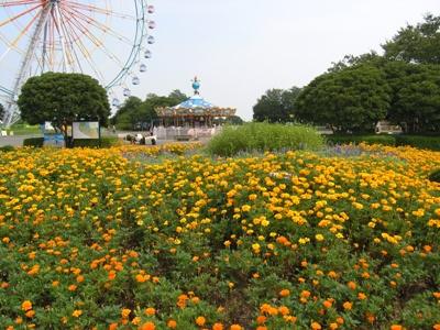ひたち海浜公園_20110817_01_hp.jpg