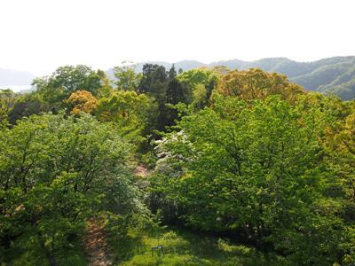 後山公園_20120505_16_hp.jpg