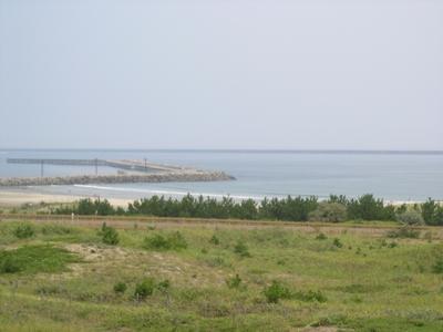 海_ひたち海浜公園_20110817_3_hp.jpg