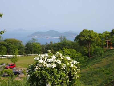 後山公園_20120505_38_hp.jpg